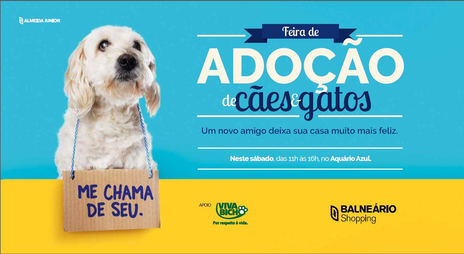 e43c6a4d5d0de Balneário Shopping - Página 5 de 5 - BC Notícias - Últimas Notícias ...